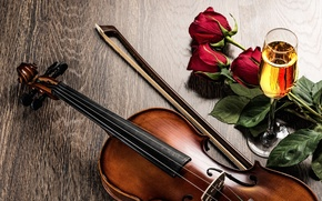 Picture flowers, wine, violin, glass, roses