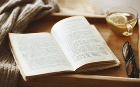 Picture comfort, lemon, tea, glasses, book, sweater, tray
