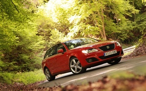 Picture road, forest, trees, machine, forest, seat, seat exeo st
