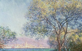 Picture Claude Monet, picture, tree, Antibes In The Morning, landscape, the city