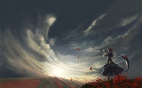 Picture field, the sky, clouds, the wind, braid, onozuka komachi