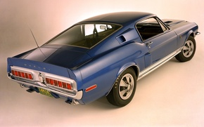 Picture Mustang, Ford, Shelby, GT500, Ford, Mustang, Muscle car, Muscle car, Shelby