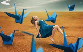 Wallpaper cranes, girl, background