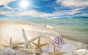 Picture sand, sea, beach, the sun, stars, shell, summer, sunshine, beach, sky, sea, sand, seashells, starfishes