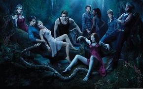 Wallpaper night, people, wolf, snake, vampires, real blood