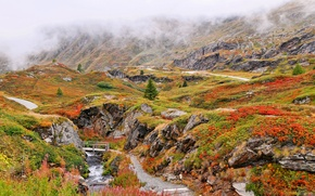 Picture grass, clouds, flowers, mountains, bridge, fog, river, stream, rocks, track