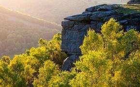 Picture autumn, forest, trees, rock, hills, haze