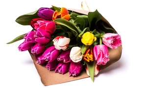 Picture bouquet, colorful, tulips, beautiful, Tulips, Bouquets