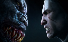 Picture the witcher, the Witcher, striga, face-to-face