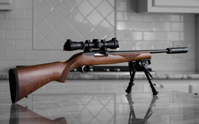 Picture weapons, background, optics, Ruger 1022