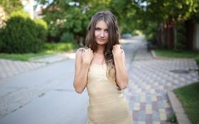 Picture girl, green, street, model, dress, light, brown hair, sunset, photographer, bokeh, hair, Kristina, Pererva Dmitry, …