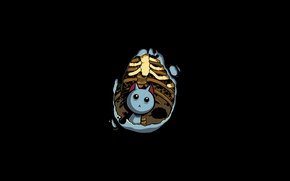 Wallpaper minimalism, bones, art, kitty, picture, the situation, background, Wallpaper, belly, black