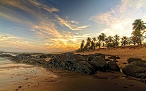 Picture sand, sea, beach, stones, palm trees