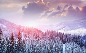 Picture winter, forest, the sky, clouds, snow, trees, landscape, mountains, nature