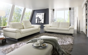 Picture living room, interior, design. house