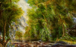 Wallpaper forest, trees, flowers, river, stream, stones