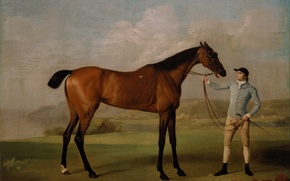 Picture horse, picture, art, Molly Long legs with jockey (1761-62), Stubbs, race horse portrait