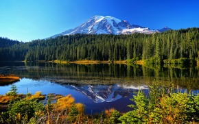 Picture autumn, forest, water, trees, mountains, lake, reflection, Mount Rainier National Park, Reflection Lake