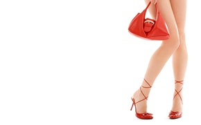 Picture shoes, handbag, studs, ladies