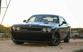 Picture Dodge, Challenger, black