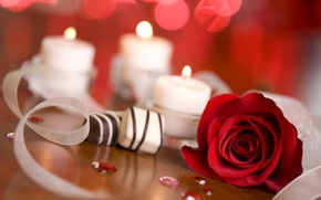 Picture glare, fire, rose, candles, candy, red, ribbons, bokeh