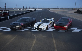 Picture Dodge, Challenger, Viper, Dodge, Viper, Charger, the charger, GTC, Challenger, SRT
