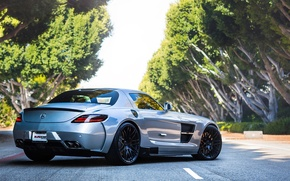 Picture road, trees, silver, silver, Mercedes, Mercedes, road, tree, sls, amg, back, AMG
