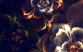 Picture light, flowers, abstraction, Wallpaper, graphics, fractal