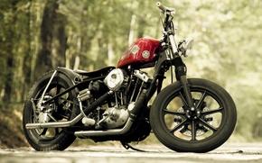 Picture design, motorcycle, bike, Harley-Davidson