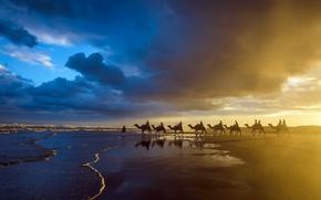 Picture sea, sunset, shore, caravan