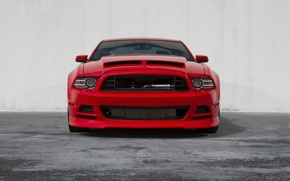 Picture red, mustang, red, ford, the front, Ford Mustang, gt5.0
