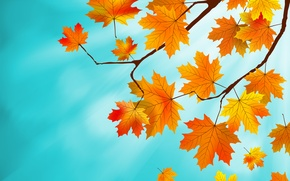 Picture leaves, background, autumn, leaves, autumn, maple