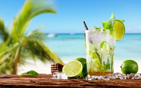 Picture sea, cocktail, lime, fresh, drink, mojito, cocktail, lime, Mojito, tropical