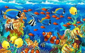 Picture sea, fish, algae, corals, dolphins