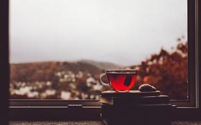 Picture cup, window, village, tea, cloudy, rainy