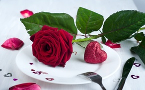 Picture flower, heart, rose, petals, plate, hearts, Valentine's Day