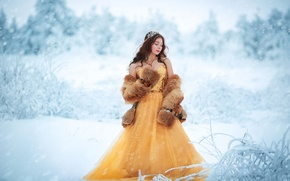Picture girl, snow, decoration, dress, fur, Winter