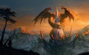 Picture people, castle, rocks, dragon, home, art, fortress, peak, Randis Albion