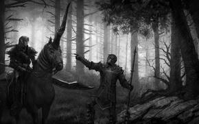 Picture elf, unicorn, Disciples 3: Renaissance, the Inquisitor