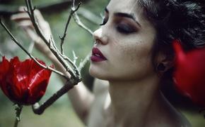 Picture flower, dream, emotions, tale, Miriam, the septum