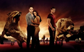 Picture wolves, vampires, twilight
