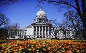 Picture flowers, Park, Madison, Washington