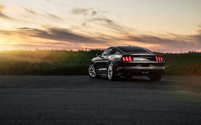 Picture Mustang, Ford, Muscle, Car, Sunset, Sunrise, Wheels, Before, Rear, Garde