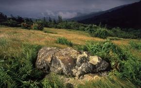 Wallpaper storm, slope, grass, Stone