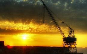 Wallpaper crane, sunset, Clouds