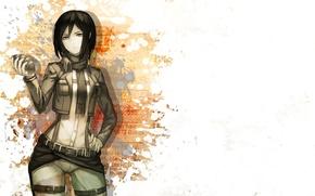 Picture girl, Attack on Titan, attack of the titans, Mikasa, Mikasa