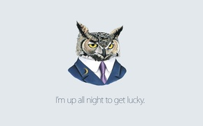 Wallpaper background, Owl, costume, tie, Daft Punk