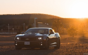 Picture Chevrolet, Camaro, Auto, Black, Sun, Muscle Car, ZL1, 2014