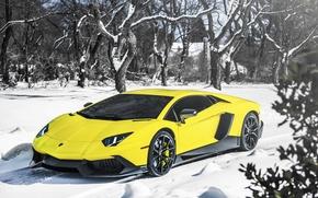 Picture Lamborghini, Snow, Yellow, Aventador, Supercar, LP720-4, 50 Anniversario Edition