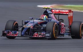 Picture Daniil Kvyat, Toro Rosso-Renault